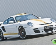 hamann-porsche-911-turbo-stallion-3