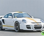 hamann-porsche-911-turbo-stallion-4