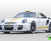 hamann-porsche-911-turbo-stallion-7